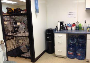 Grooming School in Arlington TX 04 ad5879051db35795724784ecb237ce2f 350x245 100 crop Grooming School   Janitorial Cleanup in Arlington, TX