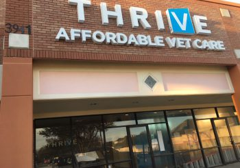 Thrive Vet Care Rough Post Construction Cleaning in Dallas TX 001 bc2c383b3e21c41f168dda4cd80c325b 350x245 100 crop Thrive Vet Care Rough Post Construction Cleaning in Dallas, TX