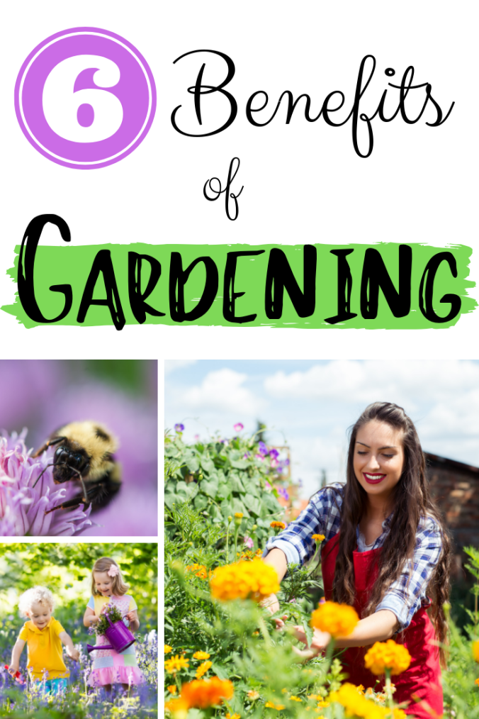 6 Benefits of Gardening