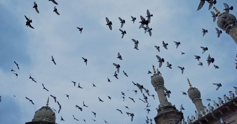Walkin' It: Charminar to Badshahi Ashurkhana, Hyderabad