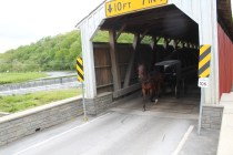 Pine Grove bridge is the only double span covered bridge for PA.