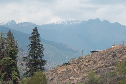 From the Paro Valley, Our first view of the Himalayas to the north.