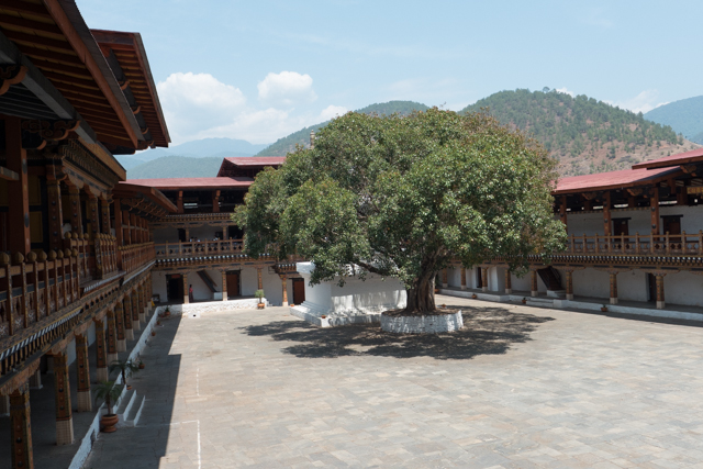 A view of the courtyard of the the Punakha Dzong.