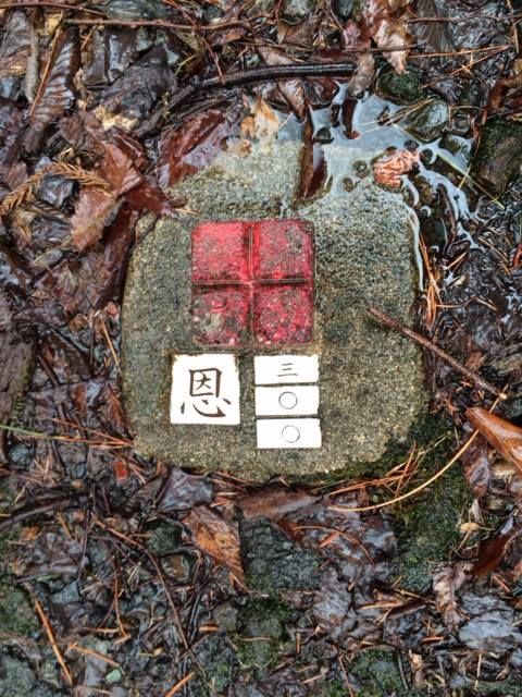 """Trail marker """"Grace & Happiness""""; much more pleasant than the forest's urban legend"""