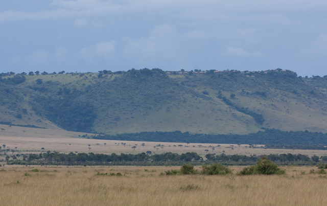 Looking up to the top of the escarpment, upon which Angama Mara is perched.