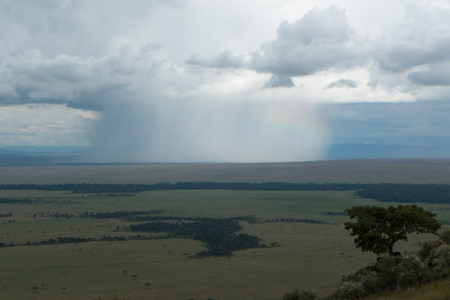 The rain showers were beautiful to watch from Angama Mara as they moved across the Maasai Mara.