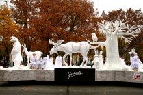 Yorkdale float