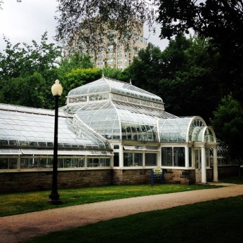 Allan Gardens Conservatory - love the old greenhouses