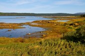 On the ride to L'Anse aux Meadows