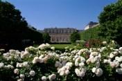 Les jardins de Palais Royale