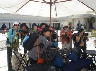 Paparazzi coreanos enlouquecidos