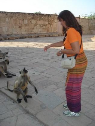 Morrendo de medo, alimentando os macacos. Eles são bravos.