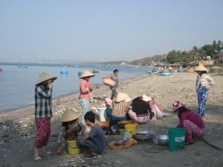 E o povo vai limpar e comprar e produzem grande quantidade de molho de peixe
