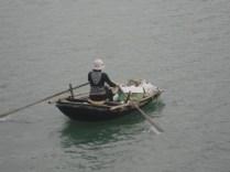 Acordei bem cedo e peguei alguém que acorda ainda mais cedo para recolher os restos de comida dos barcos