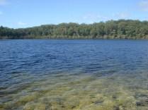 Um dos 60 e tantos lagos da ilha. Não tem vida no lago.