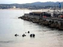 É um lugar super popular para fazer mergulho e dão aulas ali também
