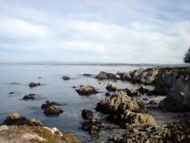 Abandonamos um pouco os leões marinhos que posam para as fotos