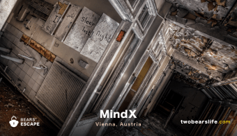 "Bears' Escape ""MindX"" in Vienna"