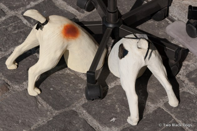 Dog decor for the home, Lucerne