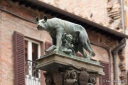 Siena she-wolf