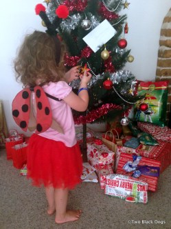 Christmas lady bug