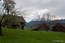 Lucerne-0286