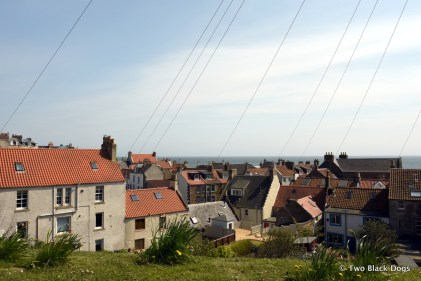 Rooftops of St Monans