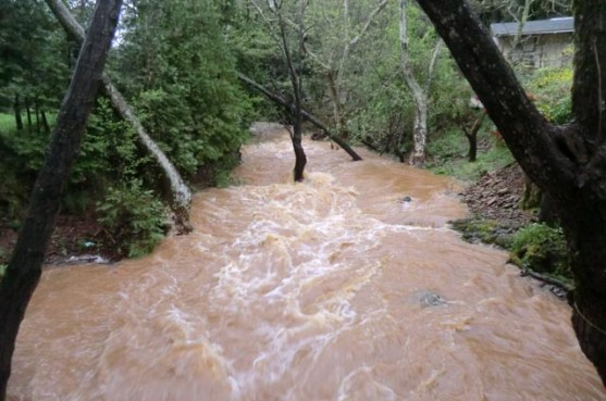 Spring 2018 flood - the water coming down the creek