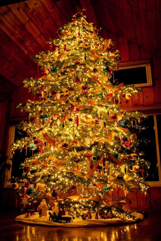 Picture of a lit, decorated Christmas tree in a house a night. Thousands of lights and hundreds of colorful and unusual ornaments. Stunning.