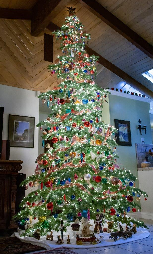 Daytime picture of a lit, decorated Christmas tree in a room with a high, wooden ceiling and skylight in background