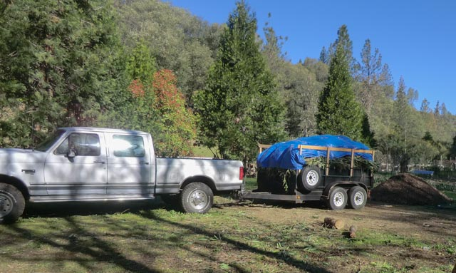A truck and dump trailer loaded with brush and covered with a tarp.
