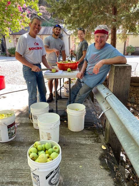 Four people cutting up apples