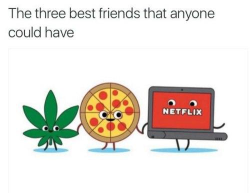 netflix-chill-best-buds-weedmemes.jpg