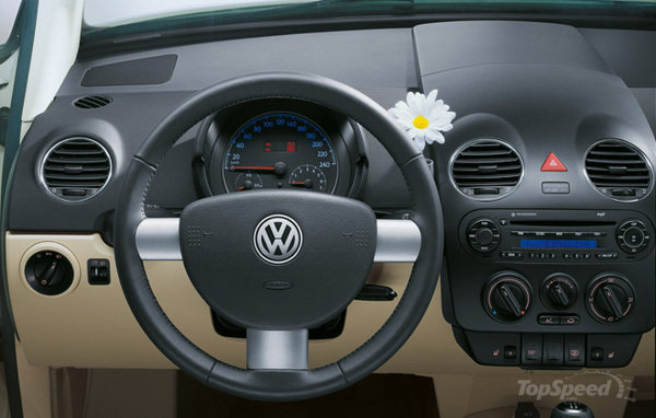 vw-beetle-flower-9