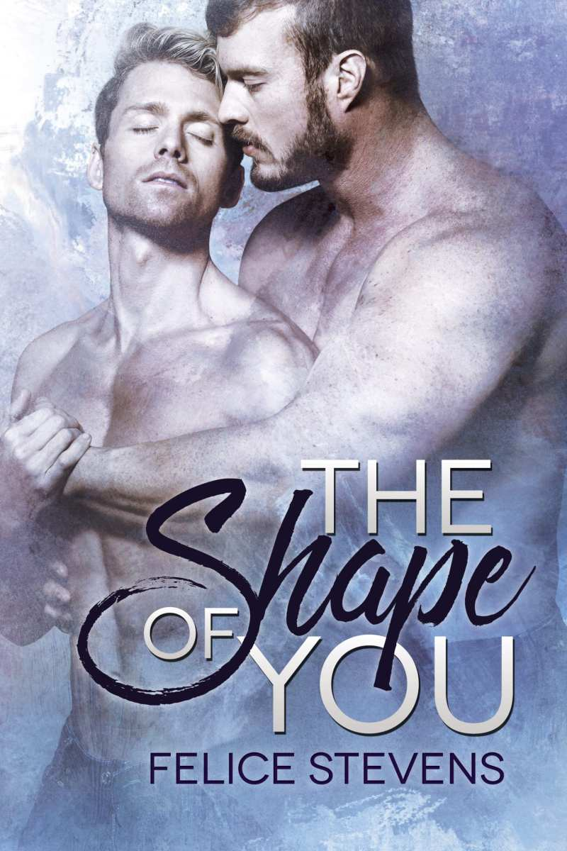 The Shape of You by Felice Stevens: Blog Tour, Excerpt and Review