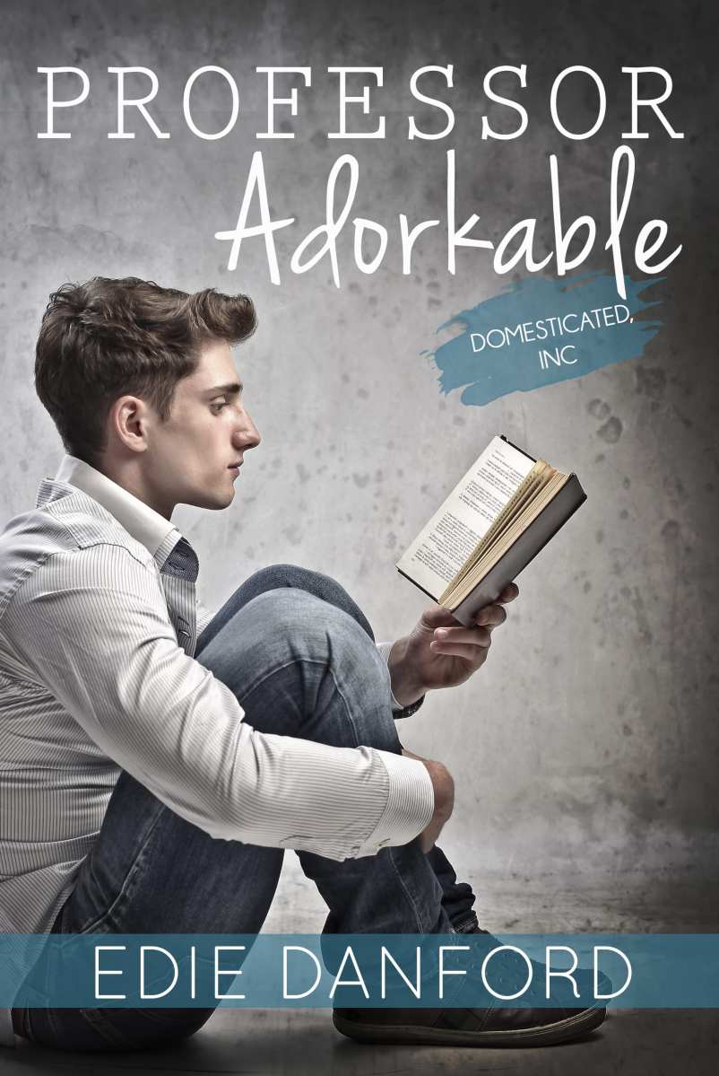 Professor Adorkable by Edie Danford: Blog Tour, Release Day Review and Giveaway