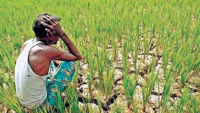 Image result for farmers
