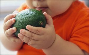 close up of a baby holding an avocado