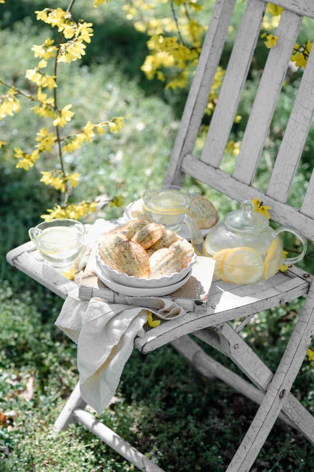 Lemon Recette Medeleines for a spring picnic dessert with lemonade.