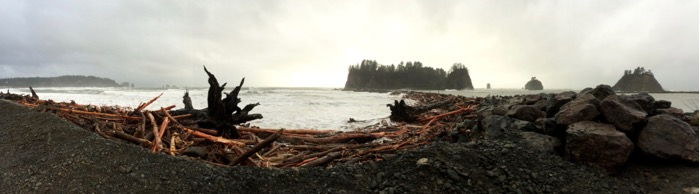 Panorama of First Beach in Olympic National Park
