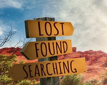 lost found searching