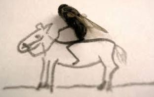 Heaven is My Horse Fly(V2) poetry two drops of ink