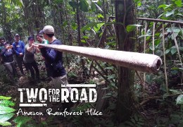 VIDEO: Our Rainforest Adventure in the Amazon of Ecuador