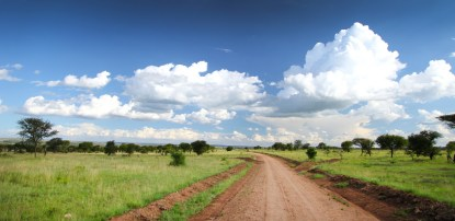 Two for the Road: Epic Photos of thSerengeti