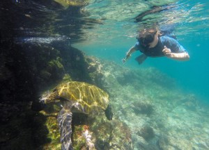two for the road travel blog snorkeling in the galapagos