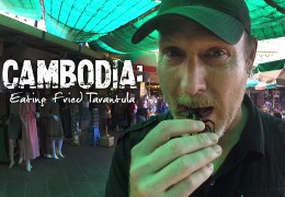 VIDEO: Eating Fried Tarantula! And What the Heck Are We Up To?