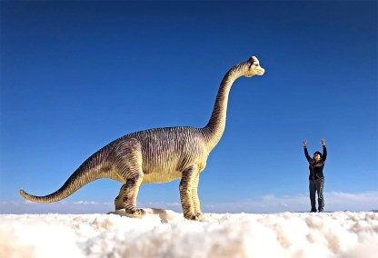 Bought a $2 toy dinosaur at a toy shop in the nearby town of Uyuni. Worth every penny!