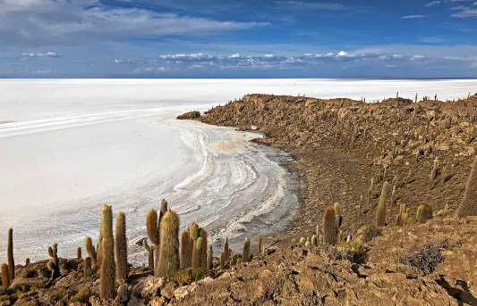The view from Inca Huasi Island. Notice how the salt looks like waves rolling in? Craziness!
