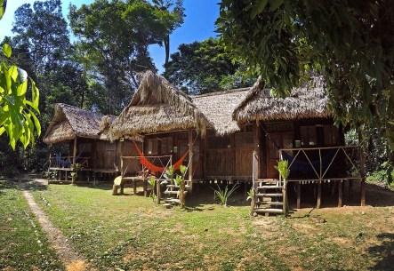 Our jungle home at Chalalan. Love it!