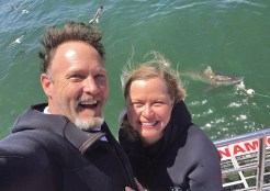 SHARKS! Yep! Did some shark cage diving with the good folks at Marine Dynamics. And what a thrill! Bucket list check!